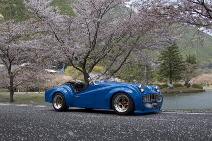 Triumph TR3A con Work Equip 40